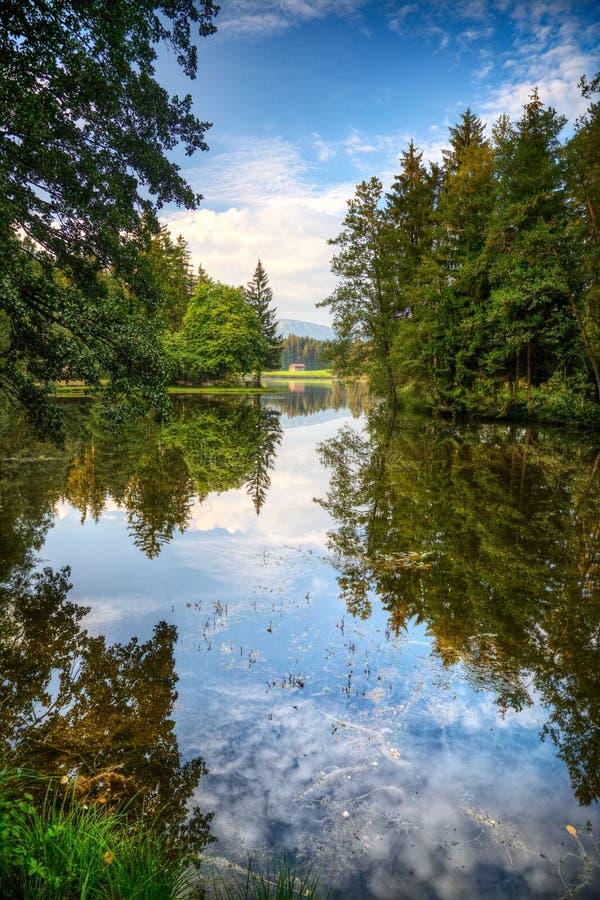 Alps See und wilder Wald stockfotografie
