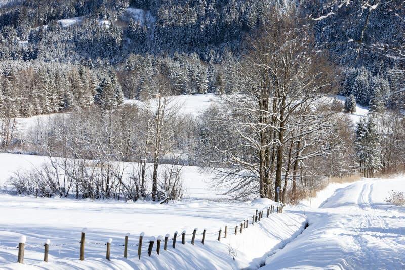 Alps in the snow stock photo