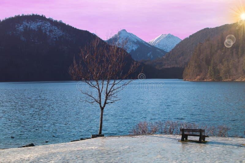 alpsee湖浪漫看法在日出期间的在冬天季节 库存照片