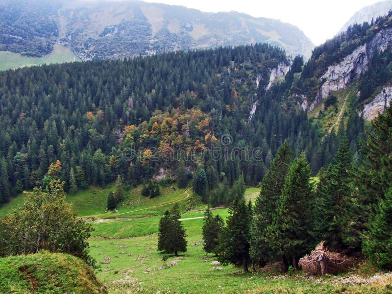 Alpstein山脉的易上镜头的牧场地和小山 免版税库存照片