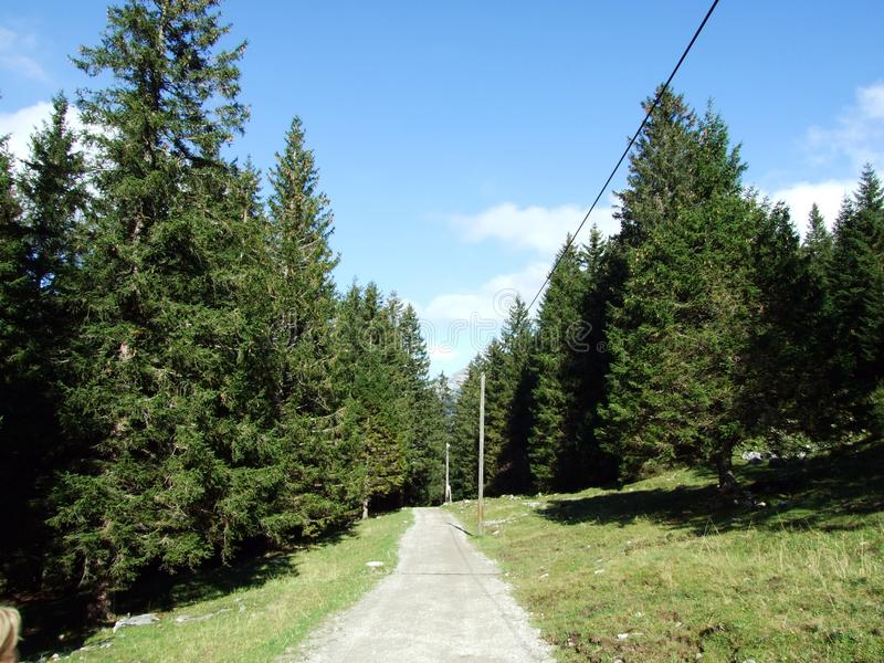 Alpstein山脉的易上镜头的牧场地和小山 库存照片