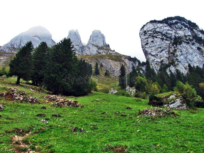 Alpstein山脉的易上镜头的牧场地和小山 库存图片