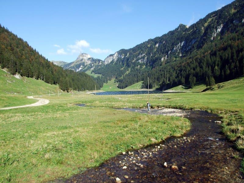 Alpstein山脉的易上镜头的牧场地和小山 免版税库存图片