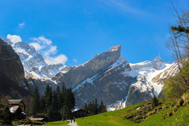 Alpstein berg i Appenzell, Schweiz fotografering för bildbyråer