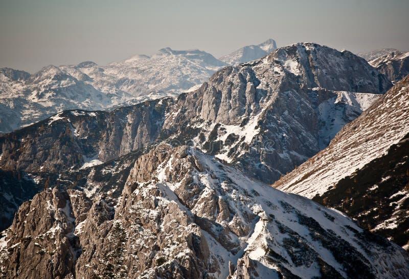alpsvinter arkivfoto