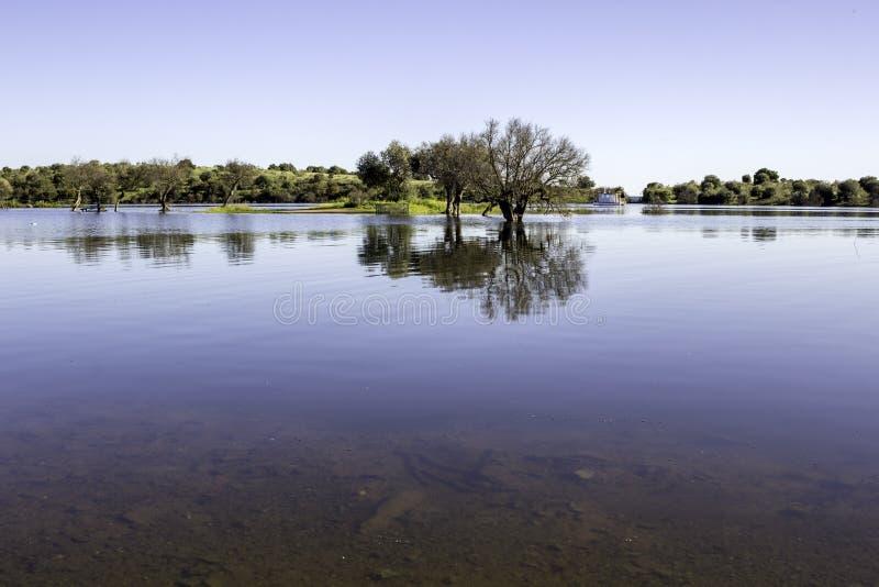 Alqueva Dam See Es beschlagnahmt den Fluss Guadiana stockfotografie