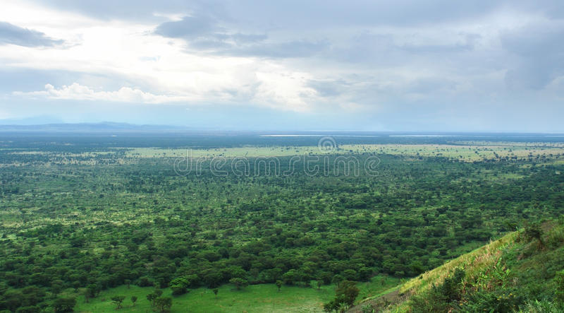 Alrededor del bosque impenetrable de Bwindi en África foto de archivo