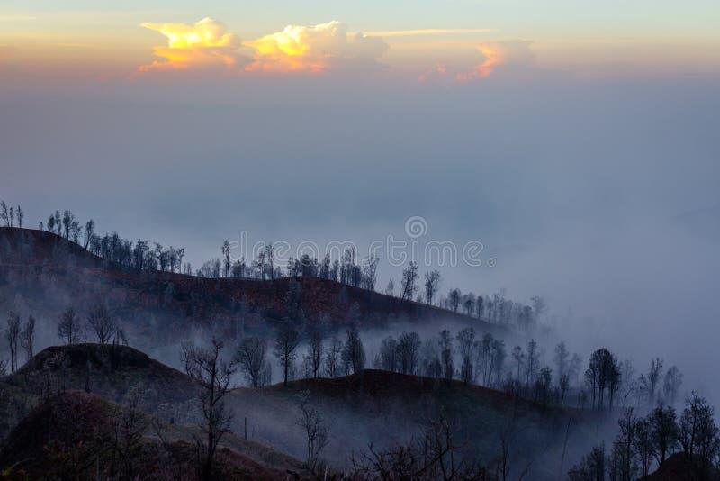 Alrededores del volcán de Ijen Árboles a través del humo de la niebla y del azufre Regencia de Banyuwangi de Java Oriental, Indon imagenes de archivo