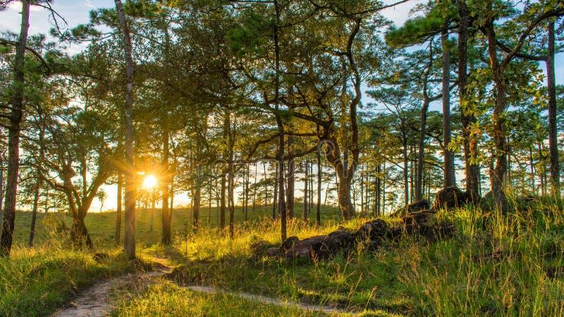 Als herrlicher Sonnenuntergang lizenzfreie stockbilder