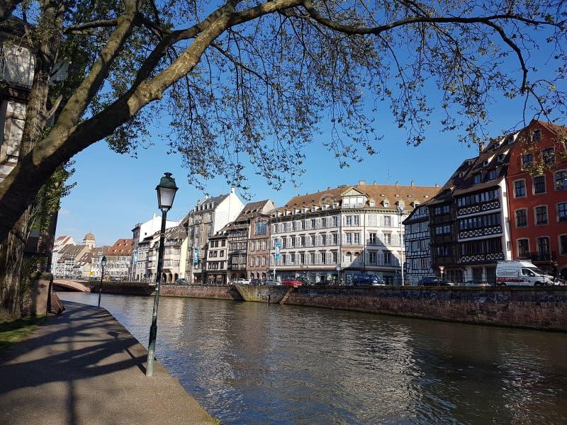 Alsace flod arkivbild