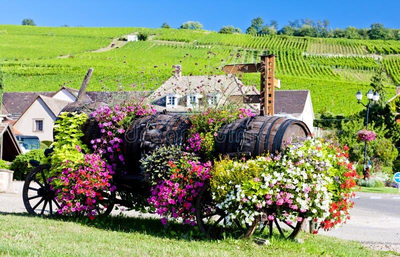 Alsace, France photo libre de droits