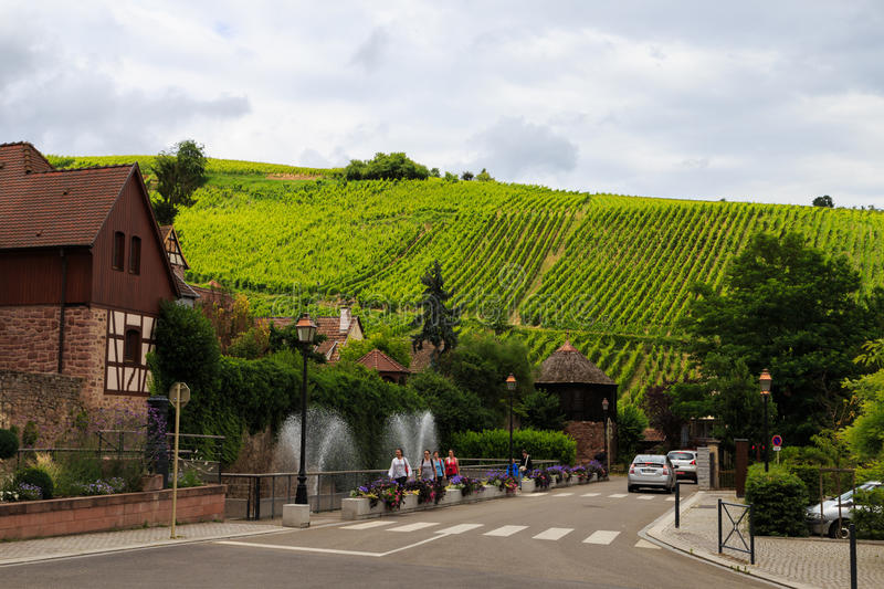 Alsace wine region stock images