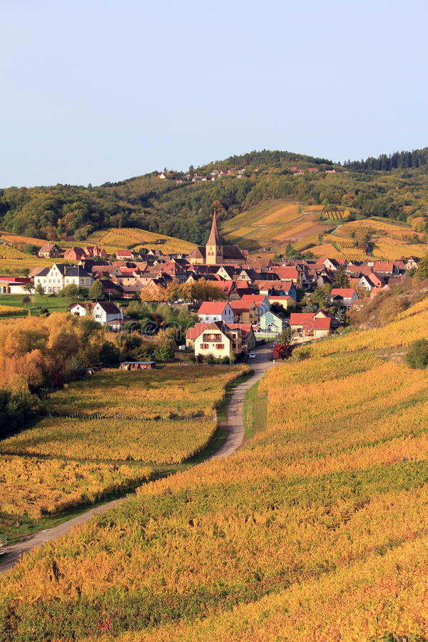 Download Alsatian Village In The Vineyard Stock Image - Image: 31187373
