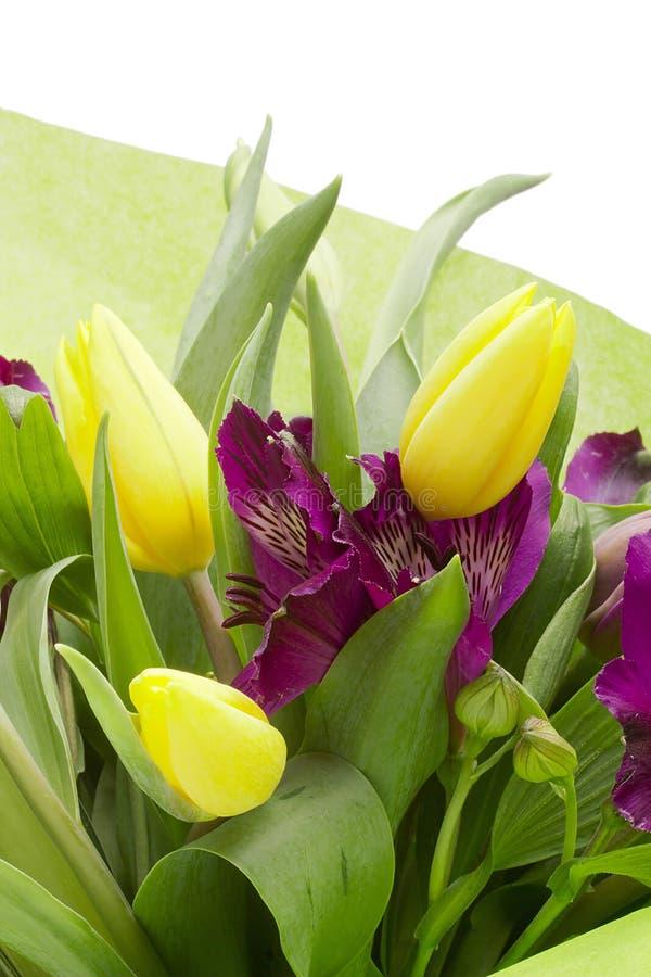 Download Alstroemeria-Blumen stockfoto. Bild von bunt, recht, nahaufnahme - 26368106