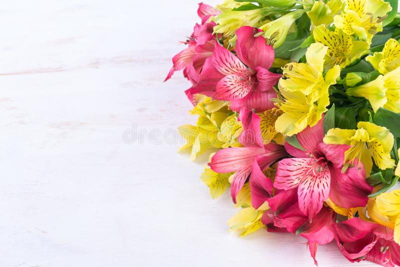 Alstroemeria giallo e rosa sui precedenti di legno bianchi fotografia stock libera da diritti
