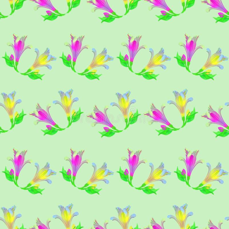 Alstroemeria Texture sans couture de modèle des fleurs Backgr floral illustration libre de droits