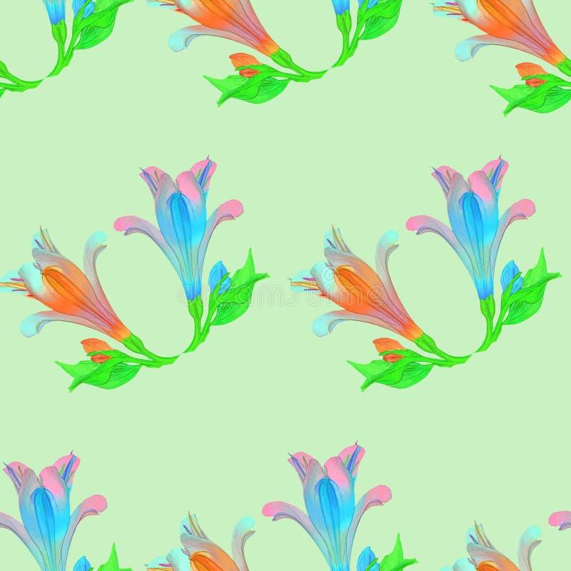 Alstroemeria Texture sans couture de modèle des fleurs Backgr floral illustration stock