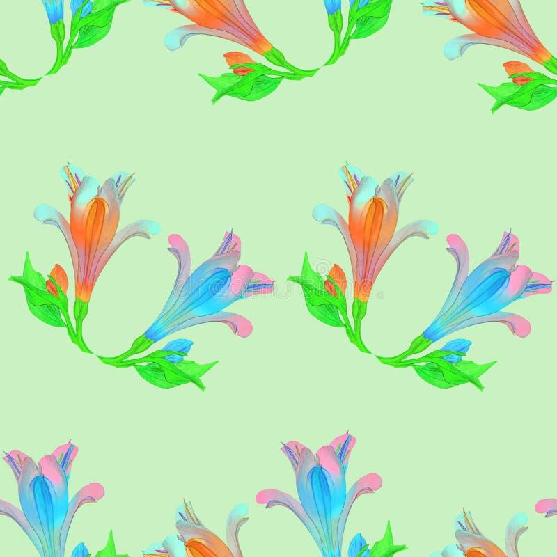 Alstroemeria Texture sans couture de modèle des fleurs Dos floral illustration de vecteur