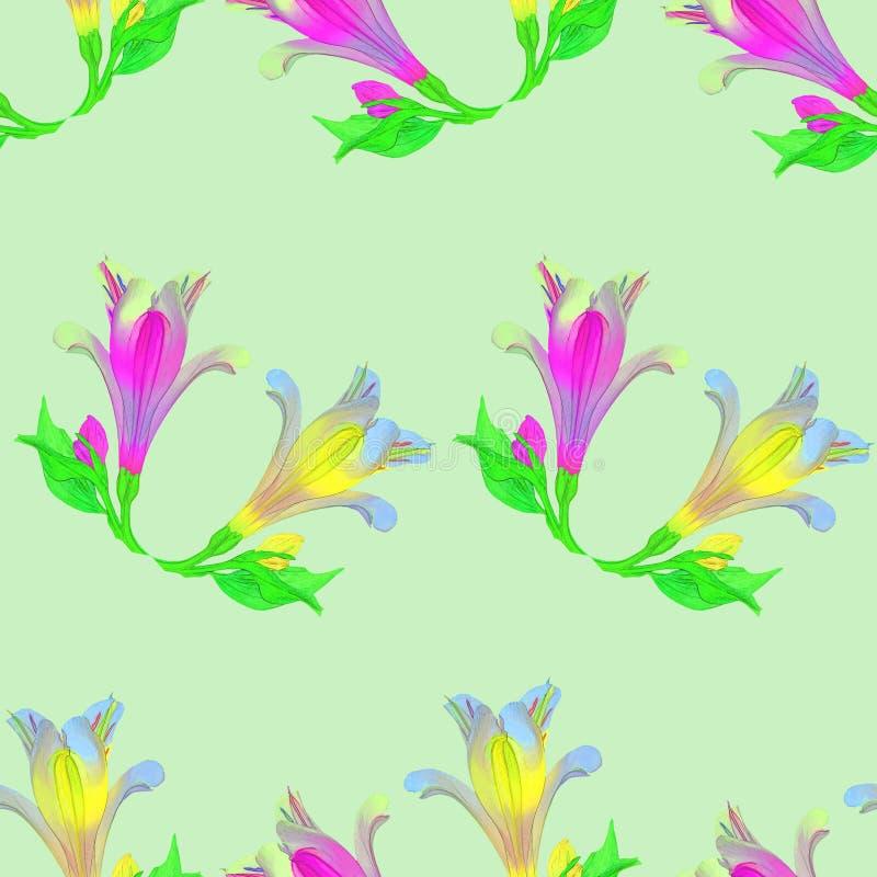 Alstroemeria Texture sans couture de modèle des fleurs floral illustration de vecteur