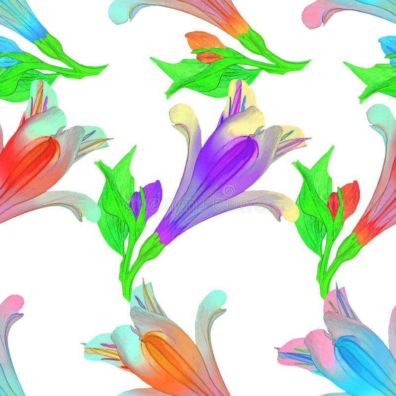 Alstroemeria Texture sans couture de modèle des fleurs floral illustration libre de droits
