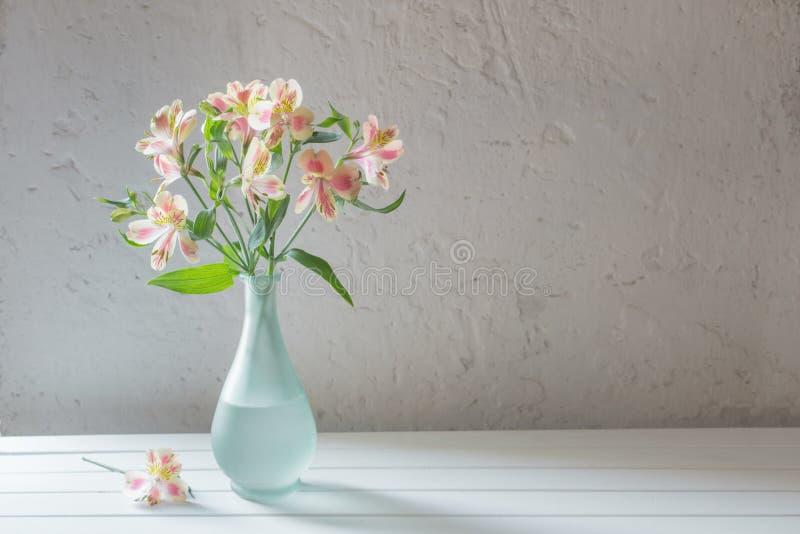 Alstroemeria in vase on white background royalty free stock image