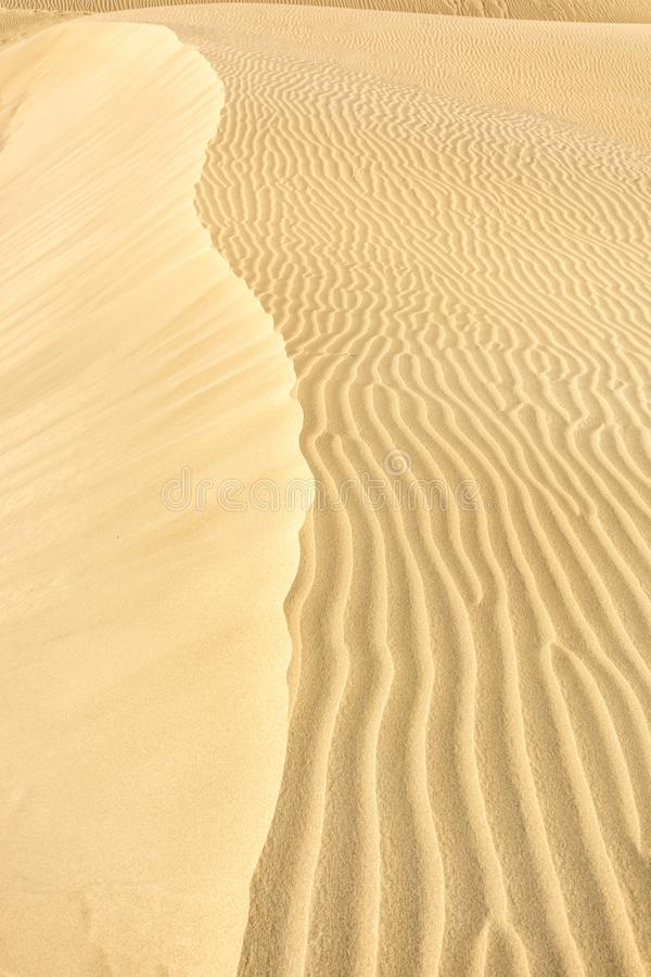 Alta duna con le derive nella sabbia immagine stock libera da diritti