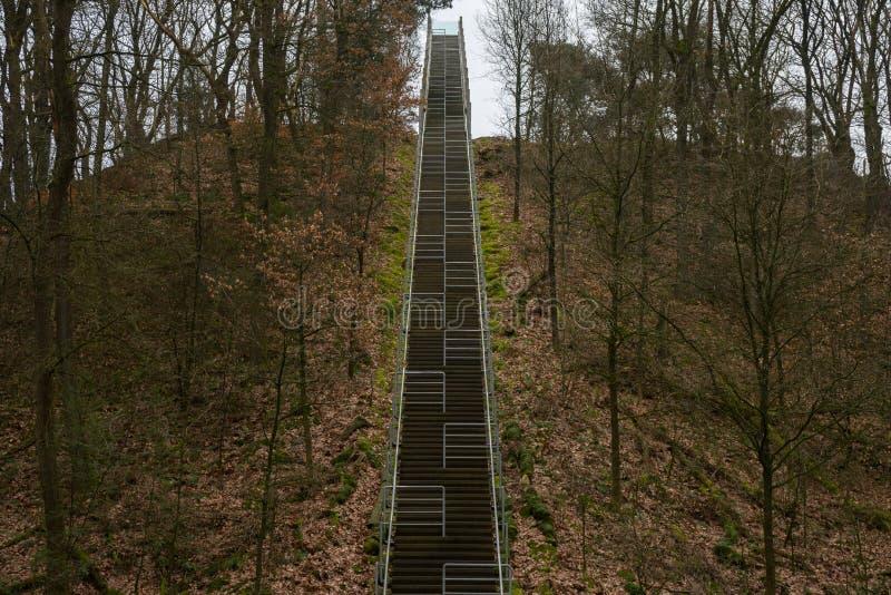 Alta escalera estupenda al cielo Bosque y hojas de los árboles de Trought Derecho encima de una línea escalera del aire libre foto de archivo libre de regalías