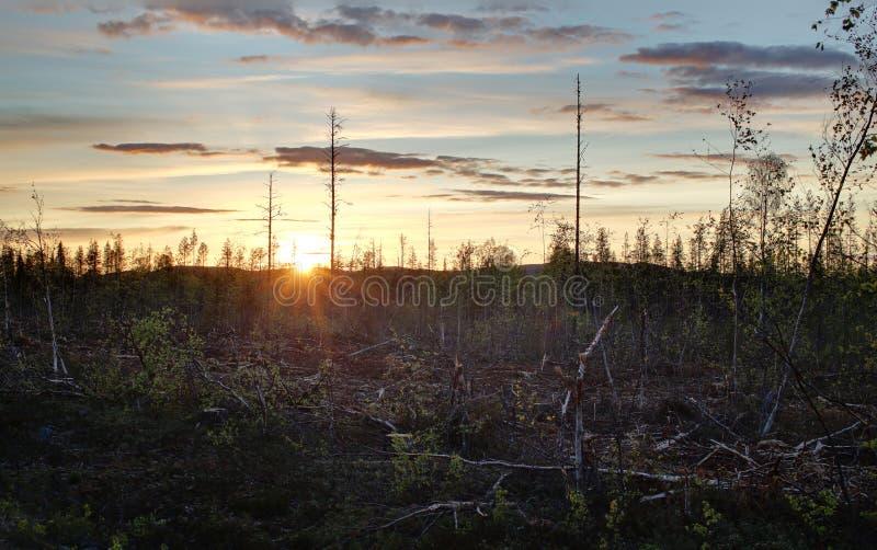 Alta immagine della gamma dinamica del tramonto in Svezia immagine stock