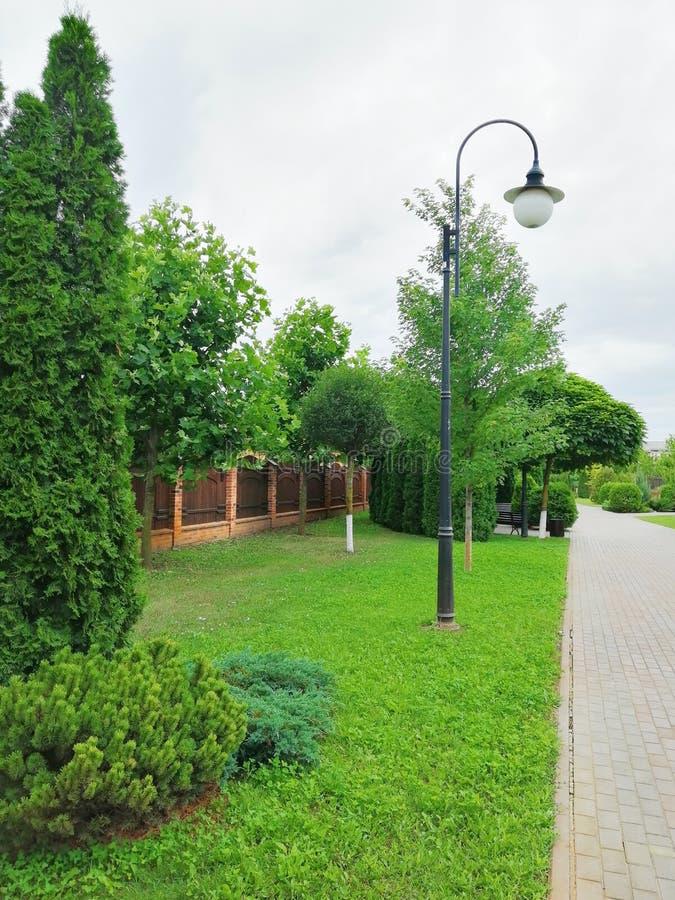 Alta linterna en un callejón verde imagen de archivo libre de regalías