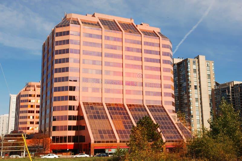 Alta subida rosada moderna. fotos de archivo