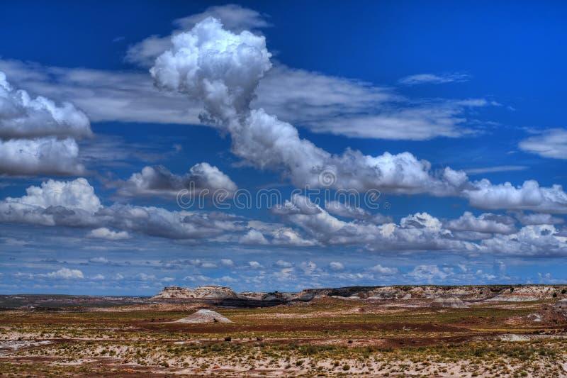 Alta tormenta de desierto fotos de archivo