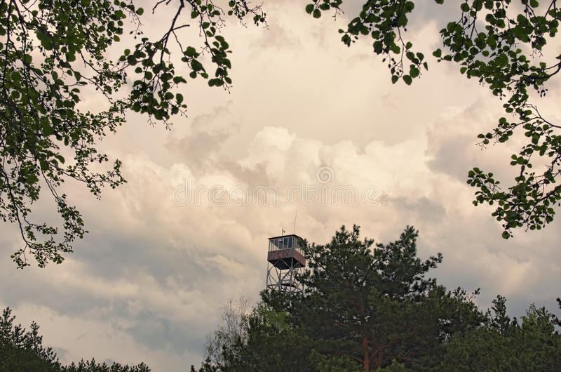 Alta torre de fuego en las nubes de tormenta grises del bosque en fondo Región de Volyn ucrania foto de archivo libre de regalías
