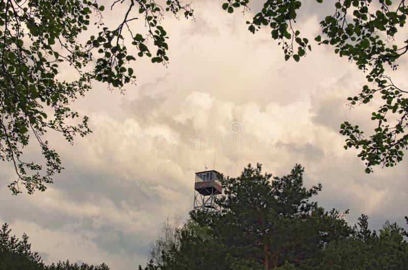 Alta torre di fuoco nelle nuvole di tempesta grige della foresta su fondo Regione di Volyn l'ucraina fotografia stock libera da diritti
