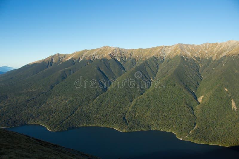 Alta valle dell'erba verde in Europa fotografia stock