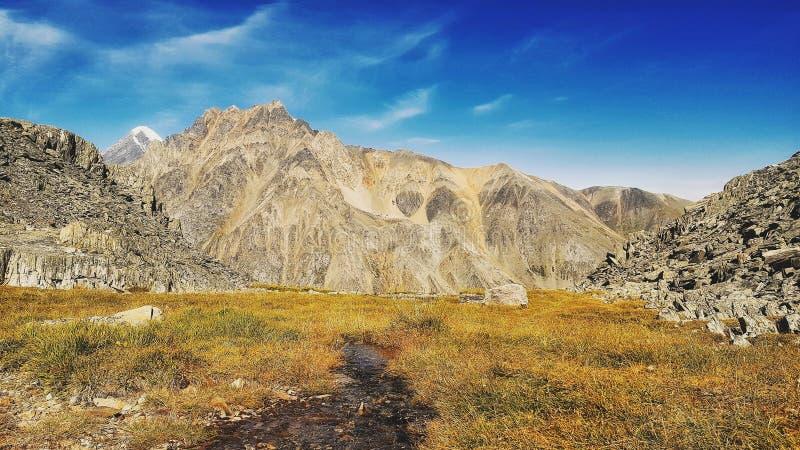 ?Altai 免版税图库摄影