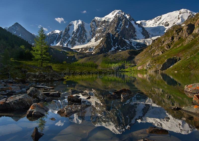 Altai berg royaltyfria bilder