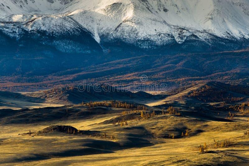 Altai Berge Goldener Herbst Blauer Himmel stockfotografie