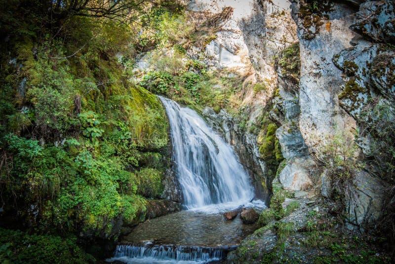 altai Chedor-Wasserfall ist auf einem der Ufer von See Teletskoye stockfoto
