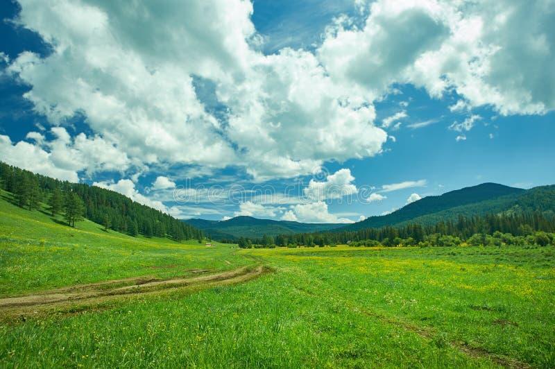 ?Altai 库存图片