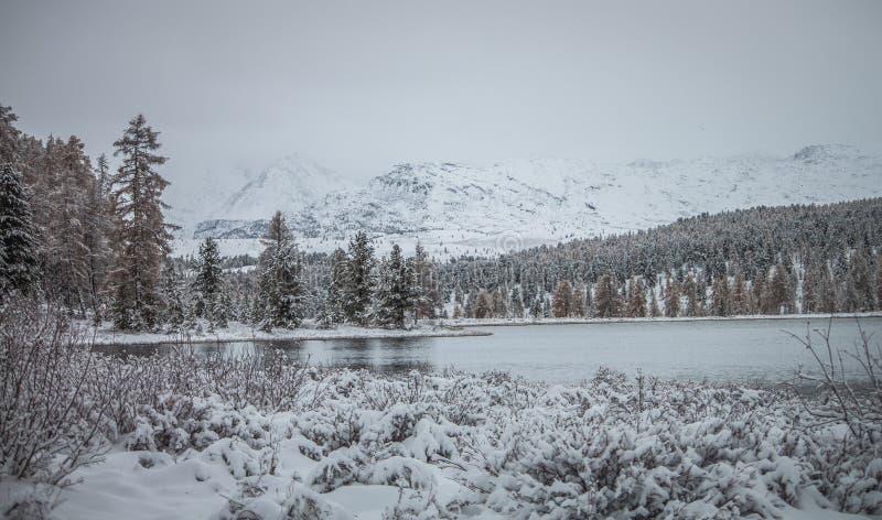 altai Der erste Schnee im Herbst in den Bergen um einen ungefrorenen See stockfoto