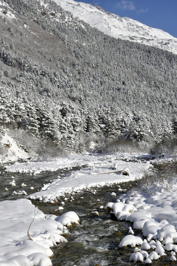altai federaci halna rzeczna rosyjska Siberia zima obraz stock
