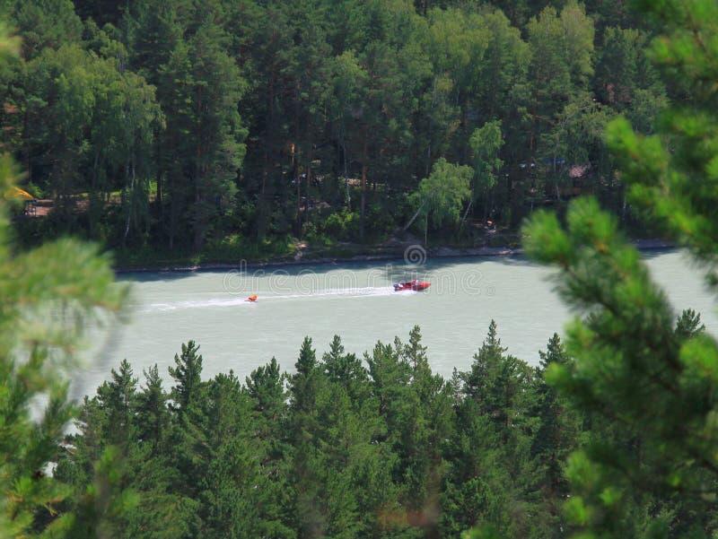 Altai, fiume di Katun fotografia stock libera da diritti