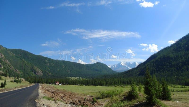 Altai. Mountain landscape. stock image