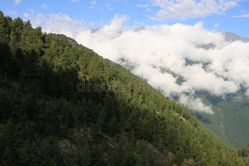 Altai Mountain in summer stock photography