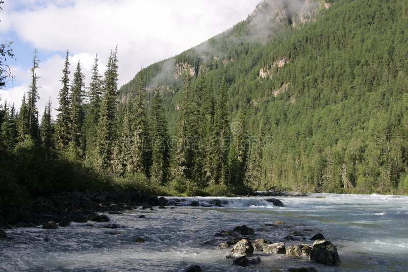 Altai Mountain in summer royalty free stock photos