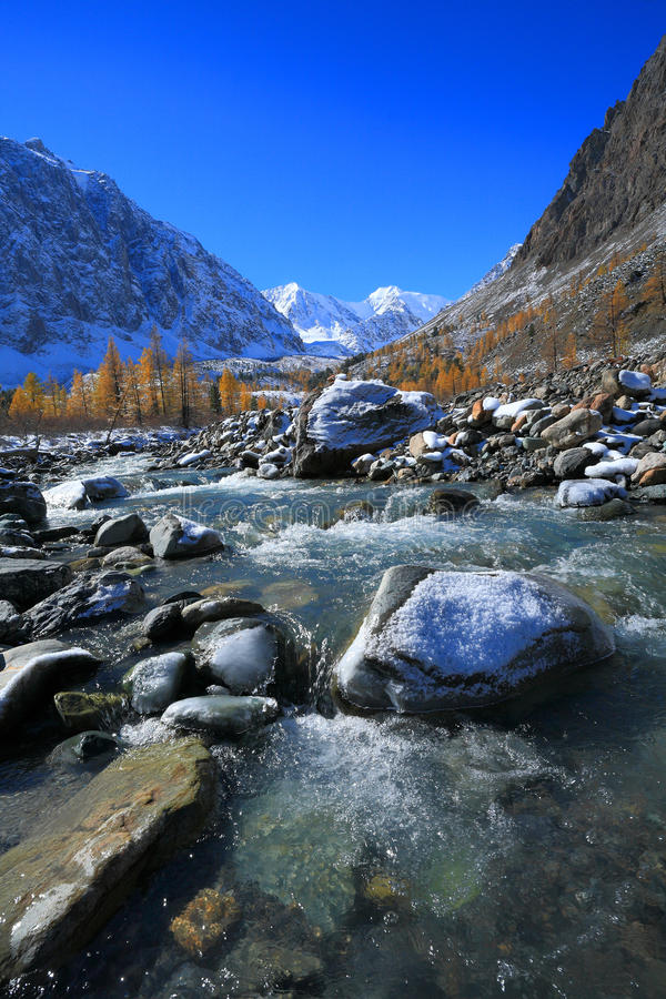 Download Altai Mountains stock image. Image of grass, larch, rock - 27139585