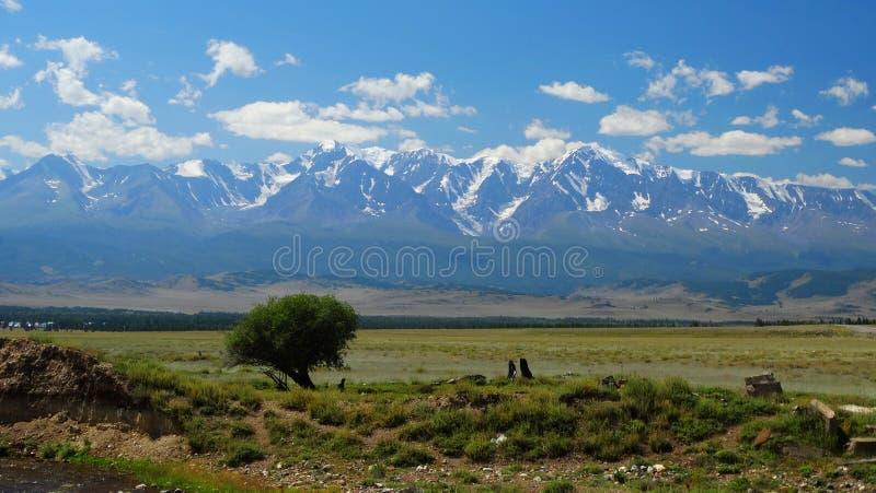 Altai. North-Chui ridge. royalty free stock images