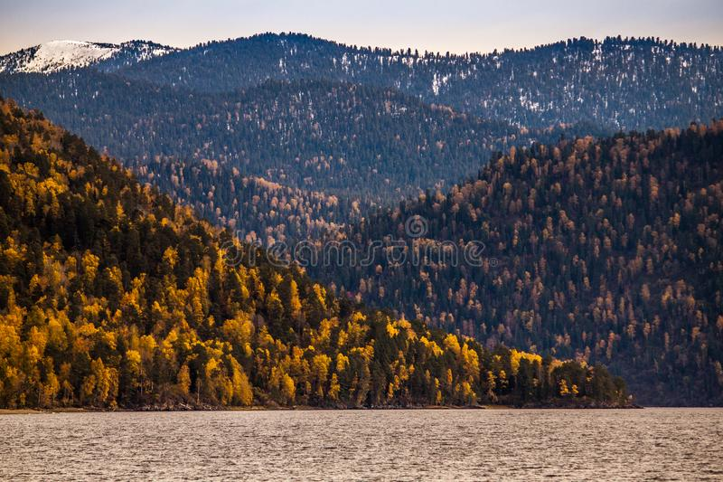 altai outono no lago Teletskoye paleta Verde-amarela das cores nas costas fotografia de stock
