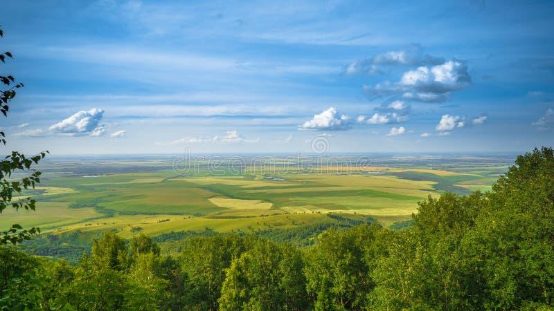 Altai pola obrazy stock