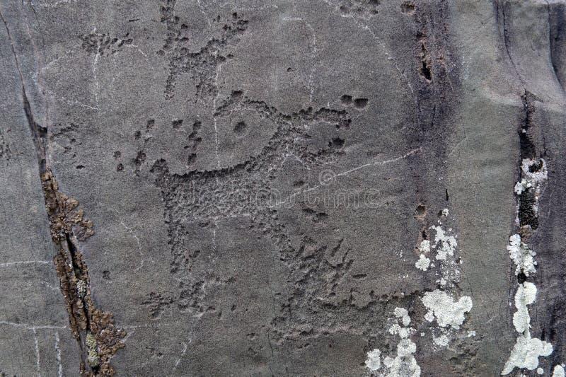 Rock petroglyphs in the tract Kalbak-Tash. ALTAI REPUBLIC, RUSSIA - JUNE 8, 2018: Rock petroglyphs in the tract Kalbak-Tash. Petroglyphs of different historical royalty free stock image
